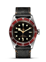 Tudor Black Bay M79230R-0005 — фото превью