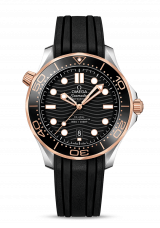 Omega Co-Axial Master Chronometer 42 210.22.42.20.01.002
