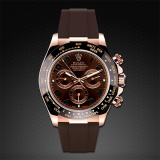 Daytona on Strap RG Classic Series Chocolate Brown