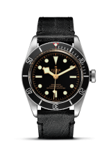 Tudor Black Bay M79230N-0001 — фото превью