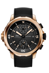 IWC Chronograph Edition «Expedition Charles Darwin» IW379503 — фото превью