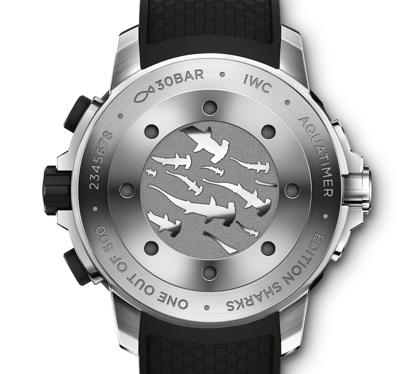 IWC sharks back